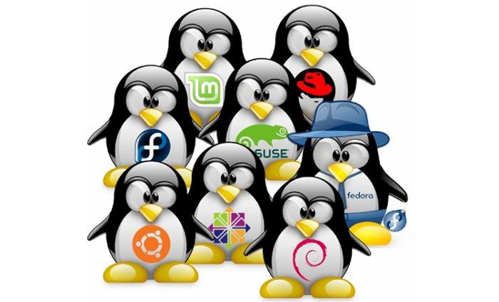 יתרונות מרכזיים בשימוש ב-Linux